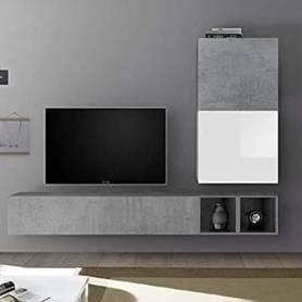 Living tv-Gris-Blanc