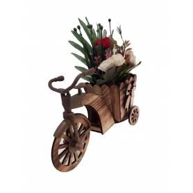 Plante  vélo fleurissant