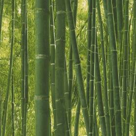 Papier peint Bambous -...