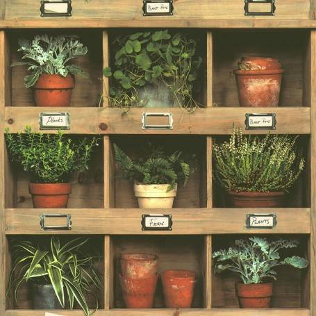 Papier peint Etagères pots plantes - Reality 3 Réf 51181807