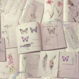 Papier peint Livres et...